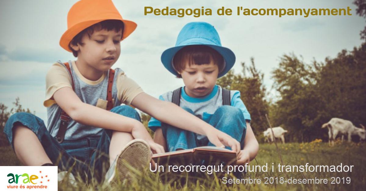 pedagogia de l'acompanyament fb